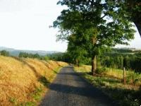 Cesta z Vysokého nad Jizerou k Ústí Farského potoka.